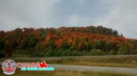 CANADA_007.jpg