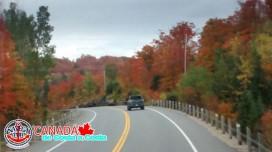 CANADA_011.jpg