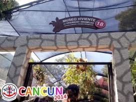 CANCUN_069.jpg